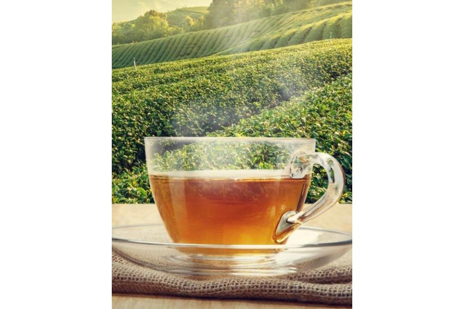 Best Tea Recipes for Digestion